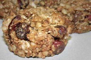 Peanut Butter Cranberry Bites