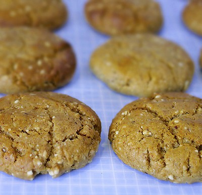 Home-Made Protein Cookies