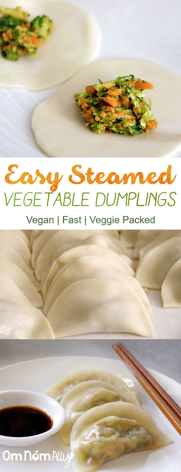 Easy Steamed Vegetable Dumplings @OmNomAlly