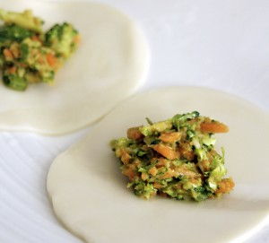 Carrot and Broccoli Vegetable Dumplings