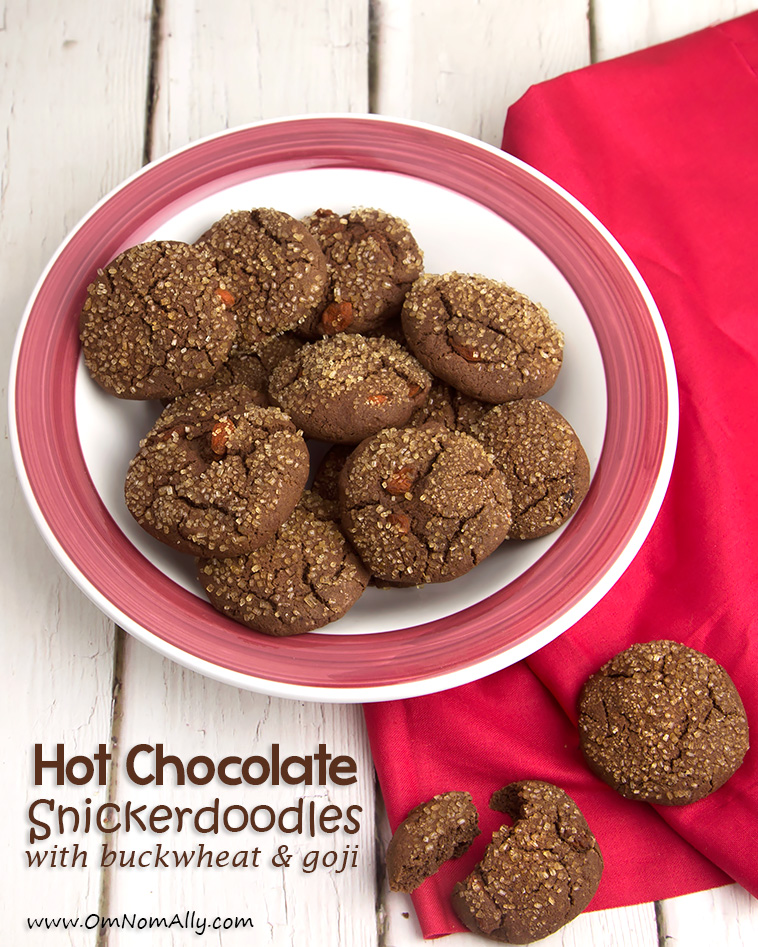 Hot Chocolate Snickerdoodles @OmNomAlly