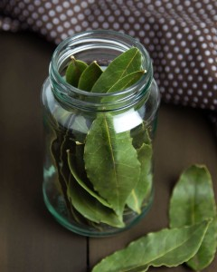 How To Dehydrate Bay Leaves @OmNomAlly