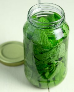 How to Make Your Own Mint Extract @OmNomAlly