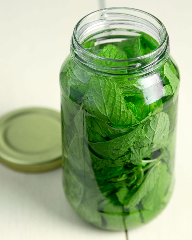 "How (I Failed) to Make Mint Extract @OmNomAlly | ""This is supposed to be easy, right?"""
