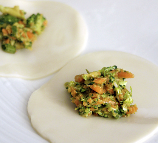 Carrot and Broccoli Vegetable Dumplings
